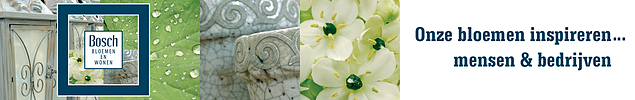 Bosch bloemen